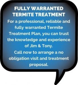Termite Treatments Ballina
