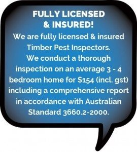 Fully licensed and insured pest control