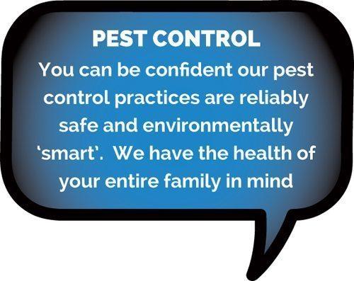 Pest Control Lismore