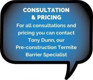 Termite Pre-construction