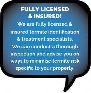 Minimising termite risk - pre-construction termite management