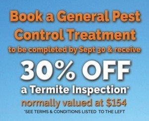 Pest Control & Termite Inspection offer